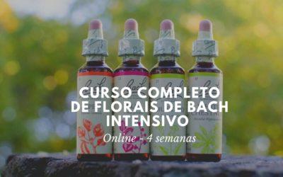 Curso Completo de Florais de Bach Intensivo | 4 semanas